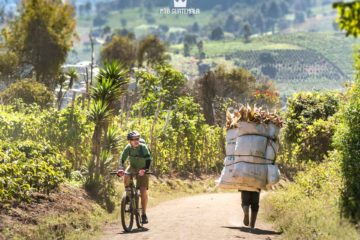 Enourmous loads make the steep hills look easier by bike.  Chimaltenango, Guatemala