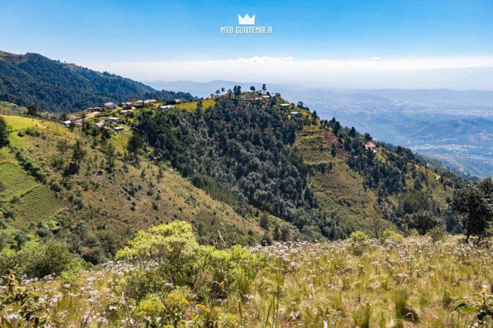 Fields of wildflowers near 10,000ft - 9th edition of the Travesía de Los Cuchumatanes.  Huehuetenango, Guatemala