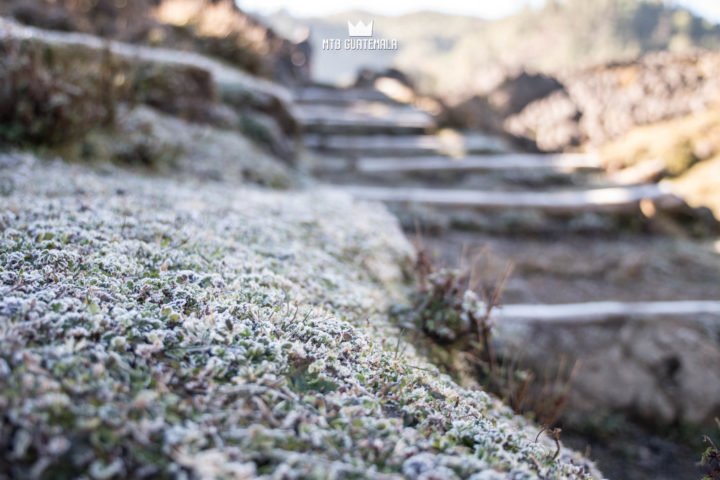 Frost in the Cuchumatánes mountains Los Cuchumatánes , Guatemala