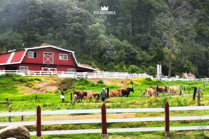 Rincón Suizo Farm MTB Guatemala